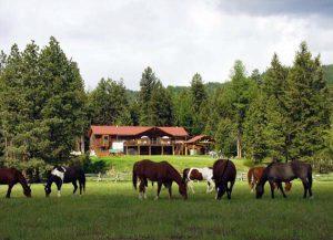 rancho em inglês